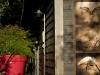 eric-guerin-la-mare-aux-oiseaux-chambres-pilotis-au-fond-du-jardin