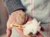 fromagerie-kerouzine-vannes-par-olivier-marie2