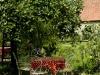 la-cigale-egaree-quimperle