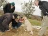 les-truffes-cavees-chez-serges-delbut