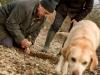 recherche-de-truffes-a-cuzance