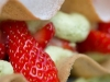 laurent-le-berrigaud-roscoff-olivier-marie-gouts-douest-16